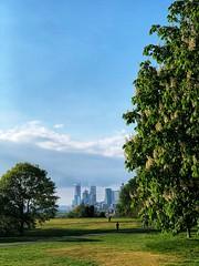 A jog in Greenwich Park (marc.barrot) Tags: shotoniphone landscape skyline isleofdogs park uk se10 london eastgreenwich greenwichpark