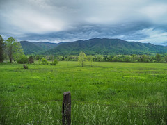 Cades Cove, Great Smoky Mountains National Park, Tennessee (netbros) Tags: greatsmokymountainsnationalpark tennessee cobbridge greyclouds cadescove greenseason netbros internetbrothers
