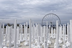 LA FORÊT (thierrybalint) Tags: oeuvre nikon nikoniste balint thierrybalint mucem laforêt forêt ciel sky nuages clouds