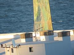 IMG_6298 (jesust793) Tags: torre milenio coruña