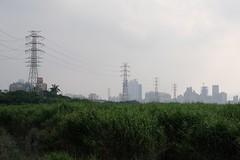 Riverside (theq629) Tags: taipei wanhua taiwan longshanriversidepark riverside powerline pylon building