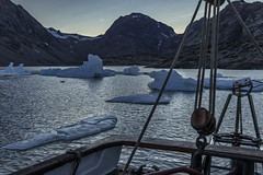Evening time in the Mudderbugt. (apcmitch) Tags: fjords anchorages icebergs ice evening eastgreenland2014 greenland dolphin sonya7 sailing