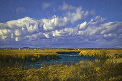 Refuge Scene (Rusty Russ) Tags: parker river wildlife refuge newburyport ma massachusetts style cloud marsh grass colorful day digital window flickr country bright happy colour eos scenic america world sunset beach water sky red nature blue white tree green art light sun park landscape summer city yellow people old new photoshop google bing yahoo stumbleupon getty national geographic creative composite manipulation hue pinterest blog twitter comons wiki pixel artistic topaz filter on1 sunshine image reddit tinder russ seidel facebook timber