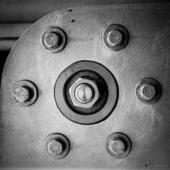 Nuts & Bolts (CNygren) Tags: bw caffenolcl camera canoscan9000f film iso320 spotmaticf tmax400 bwfp expired smctakumar1855