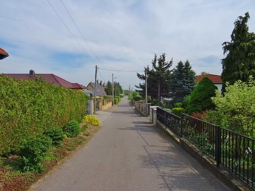 村上里和の画像 p1_17