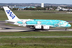 Airbus A380-841 - ANA - JA381A - s/n 263 - Flying Honu - Kai (French Frogs Pix ✈) Tags: avion aircraft plane aviation airplane airbus a380 ana ja382a tortue turtle rollsroyce trent trent900 specialpaintscheme specialcolors japan honu flyinghonu kai staralliance airliner