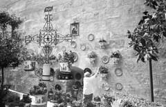 190428_Granada_025 (Stefano Sbaccanti) Tags: stefanosbaccanti spain 2019 leicam7 andalucia analogue analogico analogicait argentique tradiciones españa