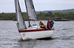 FA up to the gate (antrimboatclub) Tags: antrimboatclub boat sail sailing ireland sixmilewater loughneagh antrimbay antrim