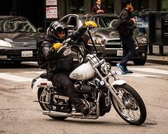 (seua_yai) Tags: harley chopper motorcycle motorbike northamerica california sanfrancisco thecity wheels transportation street seuayai sanfrancisco2019