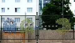 Pac Man Fence (augenster*chen) Tags: fence zaun flickrfriday fancy smileonsaturday fancyfence