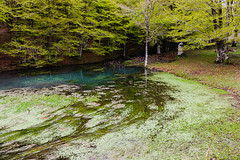 Maulazzo (Cristian Corso) Tags: lake water nebrodi canon landscape wild