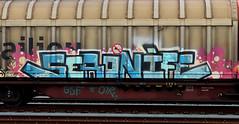 graffiti on freights (wojofoto) Tags: amsterdam nederland netherland holland graffiti streetart cargotrain freighttraingraffiti freighttrain freights fr8 vrachttrein wojofoto wolfgangjosten trein train seronife