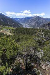 Mirador del Camí de les Fonts, Andorra (kike.matas) Tags: canon canoneos6d canonef1635f28liiusm kikematas lesescaldes andorra andorre principatdandorra pirineos paisaje montañas senderismo excursión hiking bosque engolasters nubes lightroom6 андорра