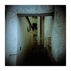 natural framed fencedoor (Armin Fuchs) Tags: arminfuchs würzburg lavillelaplusdangereuse entrance holga analog film mittelformat mediumformat 6x6 120mm velvia100 square windows fuji vignette fence fencedoor