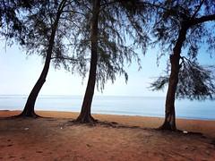 Sungai Udang, Malacca https://maps.app.goo.gl/3G3txTZhSBWLZden7  https://foursquare.com/soonlung81  https://maps.app.goo.gl/CPWsi  Transportation service: 交通服務: Servicio de transporte: Service de transport: خدمة النقل: Транспортные услуги: Transport-Servi (soonlung81) Tags: semester reizen 여행 ชายหาด viaggio malaysia vakantie asian holiday 馬來西亞 การเดินทาง 휴일 trip fiesta vacances سفر strand 亞洲 пляж путешествие 海滩 马六甲 melaka spiaggia ビーチ 바닷가 度假 旅行 voyage عطلة праздник playa vacanza วันหยุด asia pantai ホリデー beach viaje plage reise urlaub travel