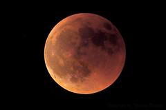 Lunar Eclipse (Astrolights.de) Tags: moon mooneclipse astrophotography zwoasi183mmpro