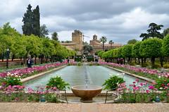 Alcazar (Erre Taele) Tags: alcazar cordona garden jardines kardin gardens colors koloreak colores lorategi king reyes catolicos andalucia patrimonio