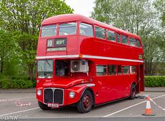 Preserved London Transport RML2530 JJD530D: 1966 AEC Routemaster (LVNWtransFoto) Tags: canoneos1dmkiv bus coach transport nebuses nebpt rally gateshead dunston vehicle aec routemaster jjd530d londontransport rml2530