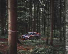 Aleksey Lukyanuk - Ford Fiesta R5 -  Maják ( Barum Czech Rally 2018) (Martin Latal) Tags: red rally rallye czech barum czechrally lukyanek mareš jakeš maják