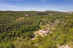 The abbey of Senanque (Boscardin Francesco) Tags: abbaye abbey senanque provence france lavande lavanda abbazia green leica q leicaq summilux