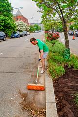 2019.05.04 Vermont Avenue Garden Blooms and Work Party, Washington, DC USA 01830
