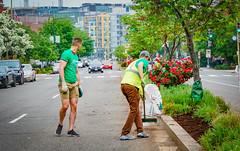2019.05.04 Vermont Avenue Garden Blooms and Work Party, Washington, DC USA 01837