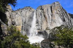 Upper Yosemite Falls (chad_shahin) Tags: yosemite yosemitevalley falls nature hiking waterfall