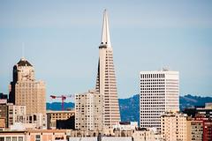 (AAcerbo) Tags: sanfrancisco california city urban architecture transamericabuilding