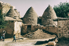 Harran 20181007-9479 (Andrew Panshin) Tags: turkey turkiye turkeyscenes visitturkey visitturkiye harran sanliurfa ruins houses beehive canon5dmk3 canon24105 historic ancient