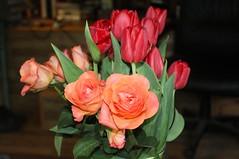 Tulips and Roses (Davydutchy) Tags: roas roos rose vstal tulp tulip tulipán bloem blume flower fleur květina bouquet straus boeket kytice april 2019