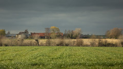 Flemish landscape (paul indigo) Tags: belgium flanders paulindigo beautiful cloudy farm field landscape sky trees willow