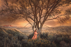 Tree of Life ({jessica drossin}) Tags: jessica drossin jessicadrossin woman girl child tree branches mountains vista view alone single dress orange sage desert pretty wwwjessicadrossincom