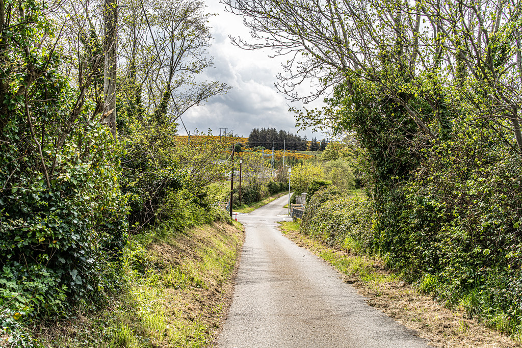 LEHAUNSTOWN LANE [NEAR THE LAUGHANSTOWN TRAM STOP IN CHERRYWOOD]-152297