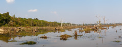 Neak Pean_650.jpg (Valeriy Gavrilyuk) Tags: ландшафт asia landscape nature pond travel water азия вода природа пруд путешествия siemreap siemreapprovince cambodia