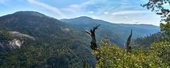 DSC06615_stitch (wNG555) Tags: 2015 california yosemitenationalpark yosemite a6000 sel1855 fav25 fav50