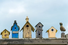 190428_613 copy.jpg (MiFleur...Thanks for visiting!) Tags: kennebunkport objects birdhouse