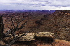 Storm Approaching The Needles Overlook (asonyphotographer) Tags: national utah desert outdoor spring canyonland landscape us sonyalphadslr
