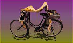Bici Santa (bellinipaolo31) Tags: fc03911 paolobellini mostradellartigianato firenze veicolo bicicletta macchinafotografica bicisanta