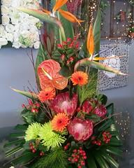 A hot tropic arrangement using gorgeous proteas, birds of paradise, hypericum berries and shamrock blooms . . #parsleyandsageflorist #stokeontrentflorist #birdsofparadise #protea #flower_beauties_ #flowers #flowerstagram #flowers🌸 #flowers_ (parsleyandsage11) Tags: flowers flowerstagram shoplocal flowerdaily florals flowergram inspiredbypetals supportsmallbusiness flowerbeauties birdsofparadise flowerssuperpics parsleyandsageflorist instapic protea flowerperfection stokeontrentflorist