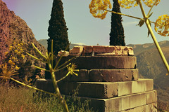 Place of Initiation | Χώρος μύησης (born to be an artist) Tags: delphi greece ancient monument harmony nature trees marble stacked yellow flowers rocks summer