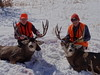 Colorado Elk Horseback Hunt & Mule Deer 1