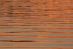 Orange/Blue (peterkelly) Tags: digital canon 6d northamerica centralamerica gadventures mayandiscovery guatemala flores lakepeténitzá water sunset evening dusk ripples orange blue