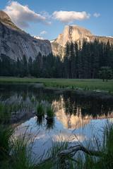 Half Dome Reflection (alicecahill) Tags: ca california spring yosemite yosemitenationalpark nationalpark halfdome sony sunset 2019 reflection ©alicecahill