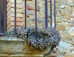 DETALL D'UN BALCÓ (Joan Biarnés) Tags: centenys pladelestany girona 314 panasonicfz1000 balcó balcón