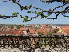 Bamberg_e-m10_1014257762 (Torben*) Tags: rawtherapee olympusomdem10 olympusm17mmf18 franken bayern frankonia bavaria bamberg neueresidenz rosengarten baum tree frühling spring aussicht view
