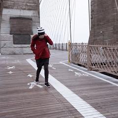 DIDX9654--Windy_snowy_day (Did From Mars) Tags: ny nyc newyork us usa brooklynbridge snow winter wind windy cold fujifilm gfx50s mf moyenformat mediumformat digital numérique fuji gfx