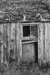 DSCF8170-2.jpg (ronaldthain) Tags: cairngormsnationalpark neglected building decay damaged highlandsofscotland scottishhighlands weathered tumbledown messy abandoned rothiemurchus scotland decayed derelict tullochgrue shed dilapidated architecture farm broken worn uk store