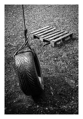 FILM - Tyre swing (fishyfish_arcade) Tags: 35mm analogphotography bw blackwhite blackandwhite canonsureshotz135 filmphotography filmisnotdead hp5 istillshootfilm monochrome analogcamera compact film ilford mono