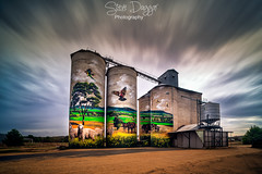 0S1A0073 (Steve Daggar) Tags: grenfell nsw australia landscape landscapephotography longexposure dramatic moody art rural