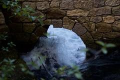 Parco Lavino (Maria Teresa D) Tags: parco lavino lago abruzzo italy decontra verde acqua